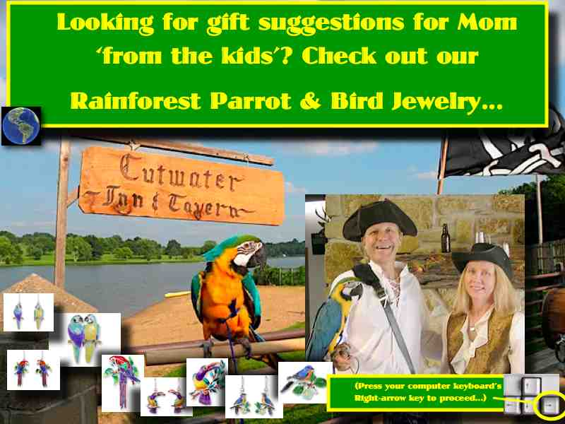 Rainforest Jewelry link